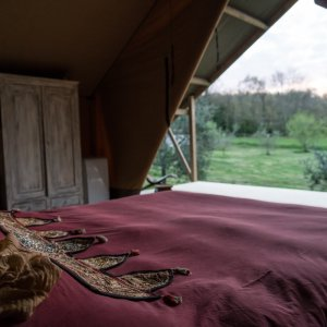 Luxury Tent, glamping